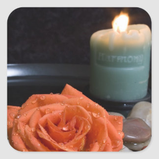 Orange Rose and Harmony Candle Stickers