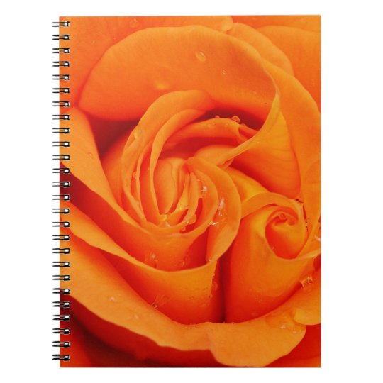 Orange Rose Blossom Notebook