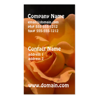 Orange Rose Bush Double-Sided Standard Business Cards (Pack Of 100)