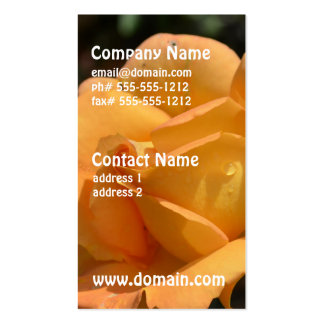 Orange Rose Double-Sided Standard Business Cards (Pack Of 100)