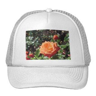 Orange Rose Trucker Hats