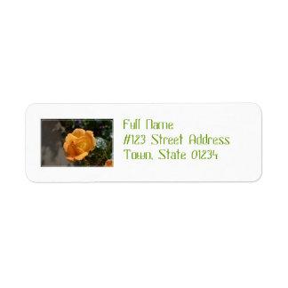 Orange Rose Return Address Label