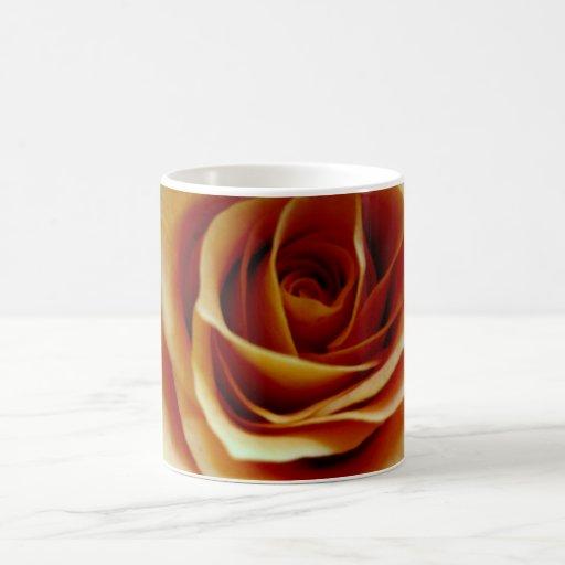 Orange rose coffee mugs