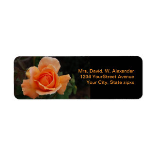 Orange Rose Return Address Label