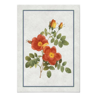 "Orange Single Roses 5"" X 7"" Invitation Card"