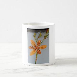 Orange spotted Iris called a  Blackberry lily Coffee Mug