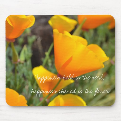 Orange Spring Flowers Mouse Pads