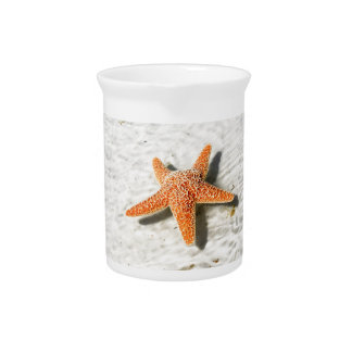 Orange starfish on a white sandy beach pitcher