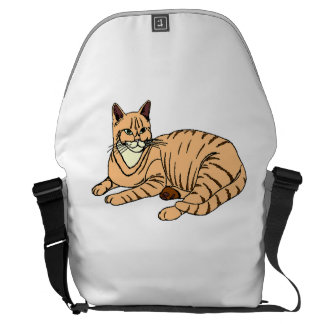 Orange Striped Cat