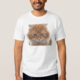 Orange Stripped Tabby Cat Tee Shirts