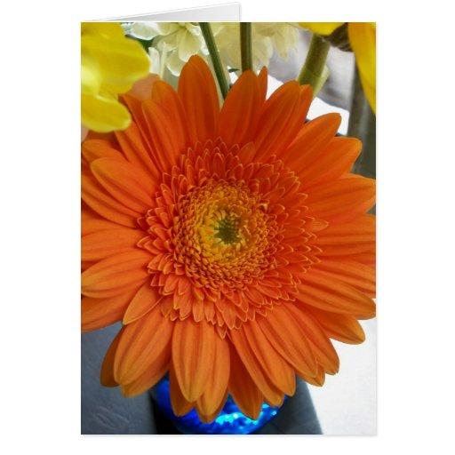 'Orange Sun'  Blank Greeting Card