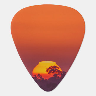 Orange Sunset with Tree Guitar Pick