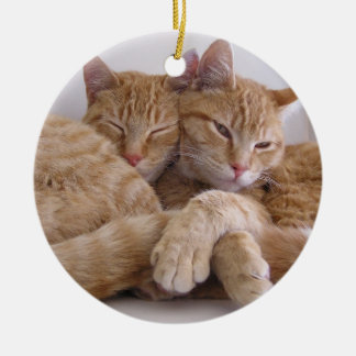 Orange Tabby Brothers Christmas Ornament