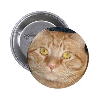 Orange Tabby Cat Pinback Button