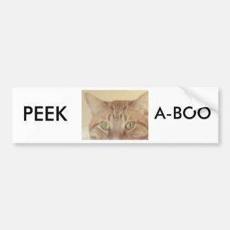 Orange Tabby Cat Car Bumper Sticker
