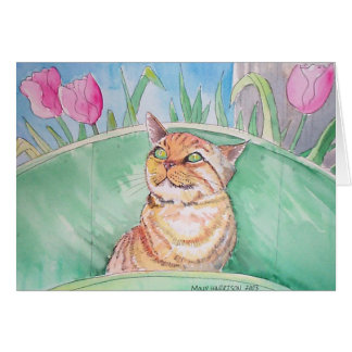 Orange Tabby Cat Card ~ Blank by Molly Harrison