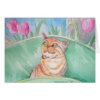 Orange Tabby Cat Card ~ Blank by Molly Harrison