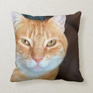 Orange tabby cat cushion