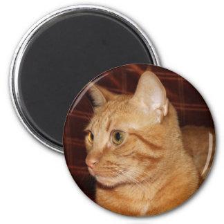 Orange Tabby Cat Face Profile 6 Cm Round Magnet