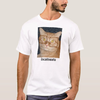 Orange Tabby Cat/Incognito Humor T-Shirt