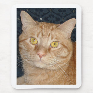 Orange Tabby Cat Mouse Mat