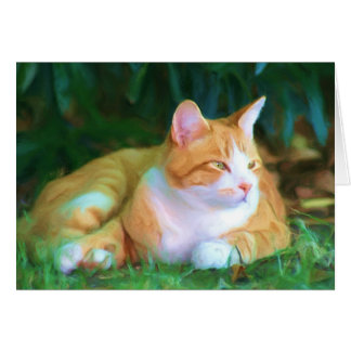 Orange tabby cat notecard