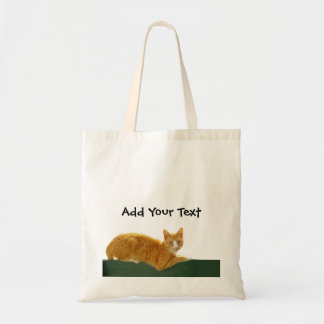 Orange Tabby Cat on Green Fence Canvas Bag