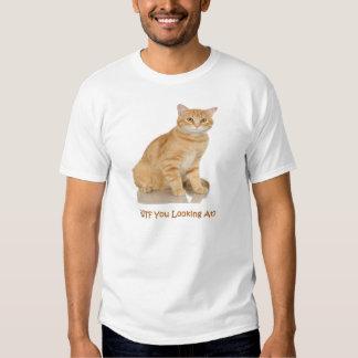 Orange Tabby Cat Shirt