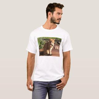 Orange Tabby Cat T Shirt For Men