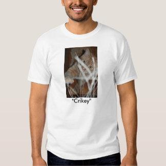 Orange Tabby Cat Tshirt