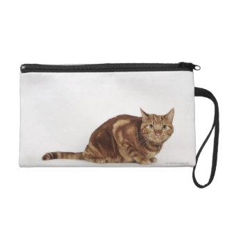 Orange Tabby cat Wristlet