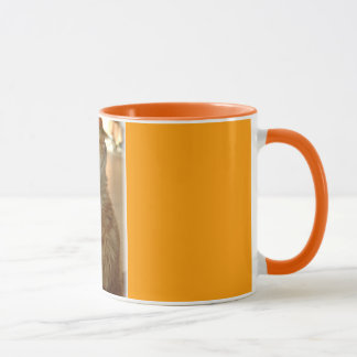 Orange Tabby Citten Mug