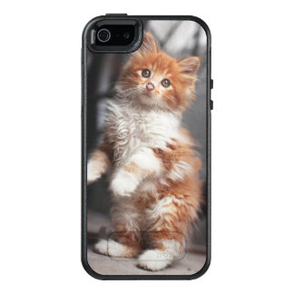 Orange Tabby Kitten OtterBox iPhone 5/5s/SE Case