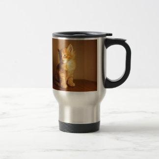 Orange Tabby Kitten Stainless Steel Travel Mug