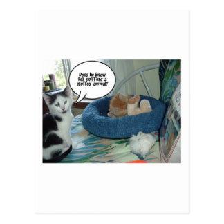 Orange Tabby Kitty Cat Postcard