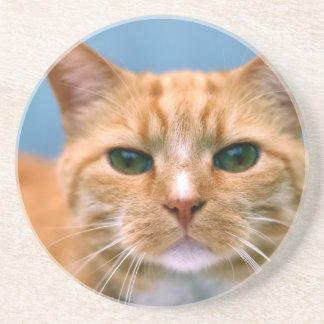 Orange Tabby Kitty Kitten Cat Drink Coaster