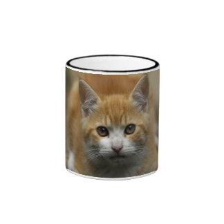Orange Tabby Ringer Mug
