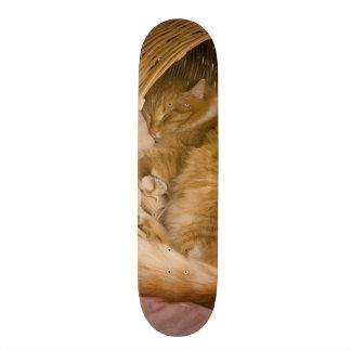 Orange tabby sleeping in hamper custom skate board