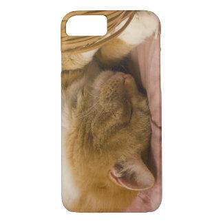 Orange tabby sleeping iPhone 8/7 case