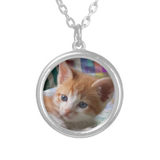 Orange Tabby & White Kitten Necklace