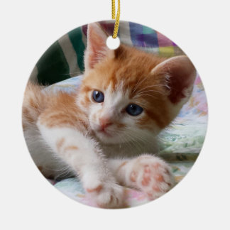 Orange Tabby & White Kitten Ornament