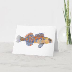 Darter Fish Gifts & Gift Ideas | Zazzle UK