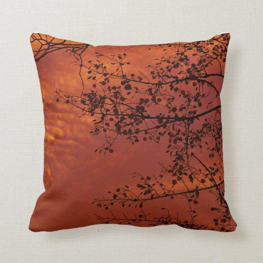 orange throw pillow with Asian flavour