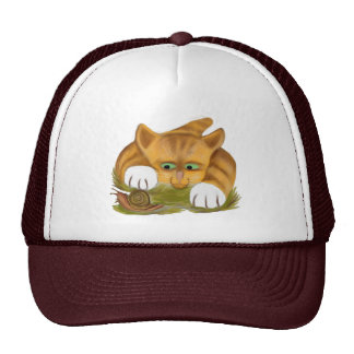 Orange Tiger Kitten finds a Snail Cap