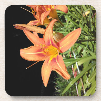 Orange Tiger Lilies Coaster