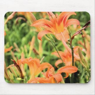 Orange Tiger Lilies Mousepad