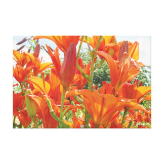 Orange Tiger Lillies Canvas Print