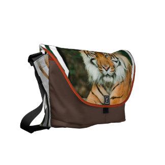 Orange Tiger Messenger Bag