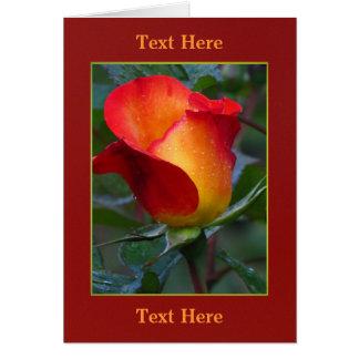 Orange To Yellow Rose Flower Greeting Card