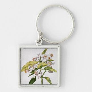 Orange tree flower, from 'La Guirlande de Julie' Silver-Colored Square Key Ring